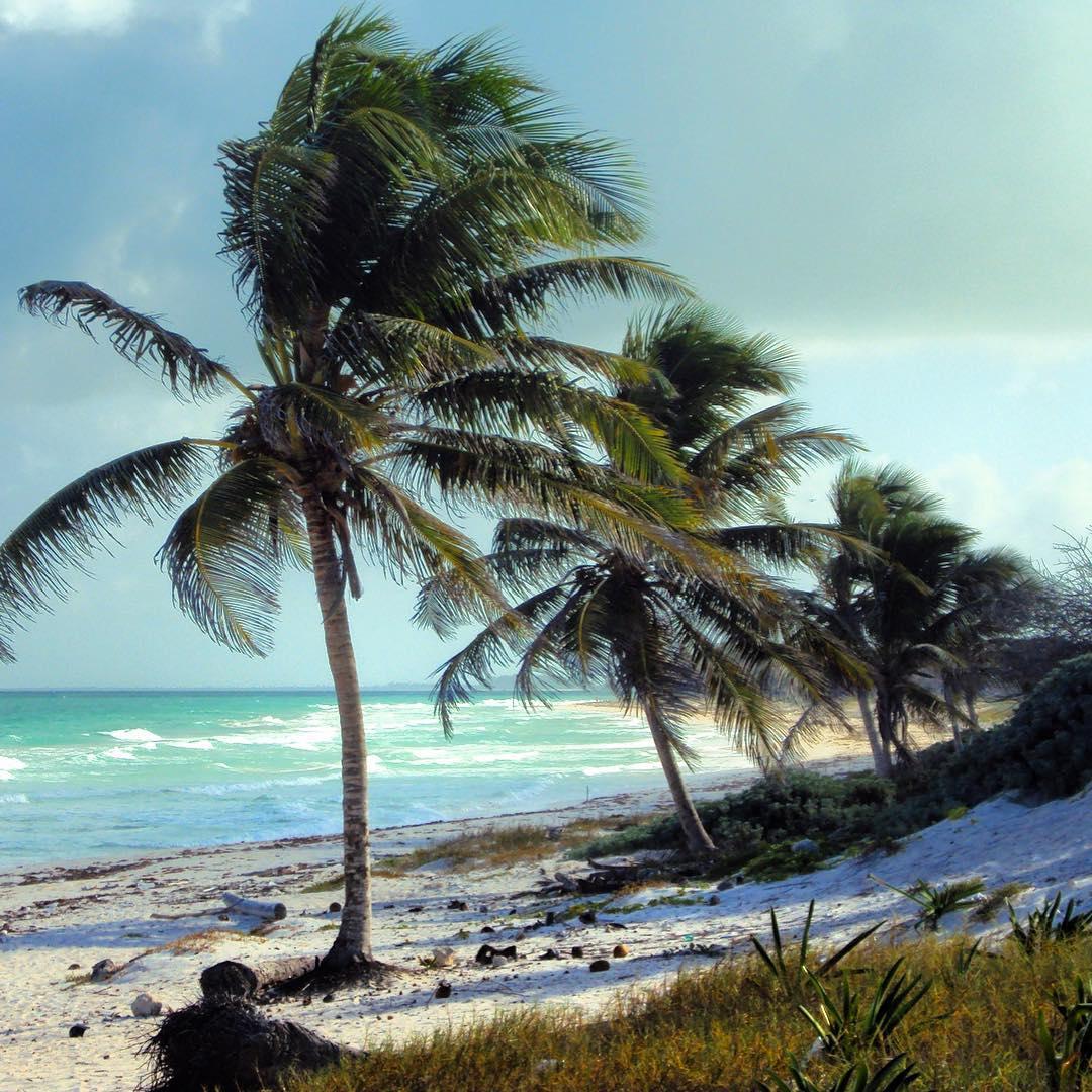 Les plus belles plages du monde ️⛱