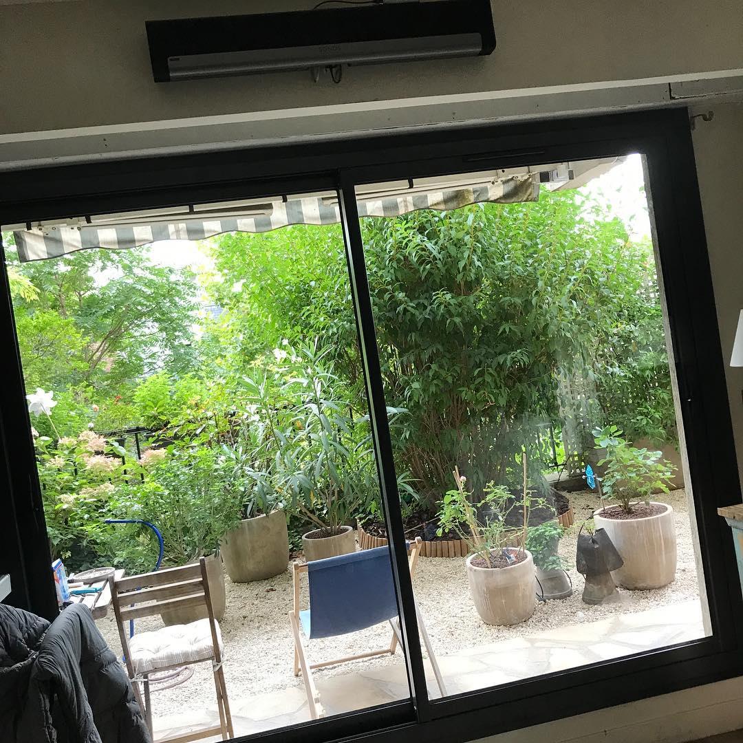 Le petit jardin  🌳🌞 ️