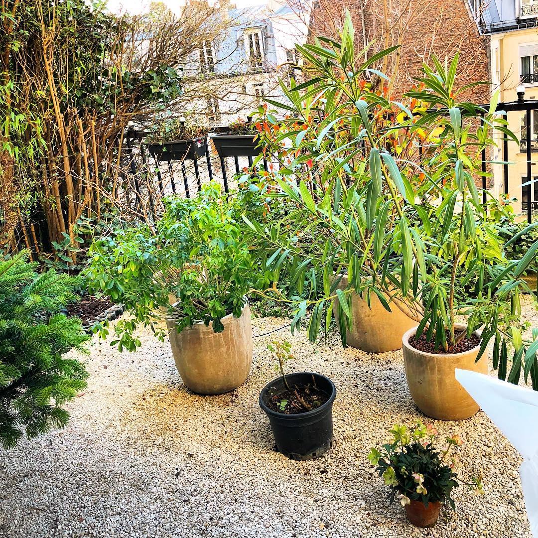Le petit jardin est prêt pour le printemps 🌳🌞 ️ .