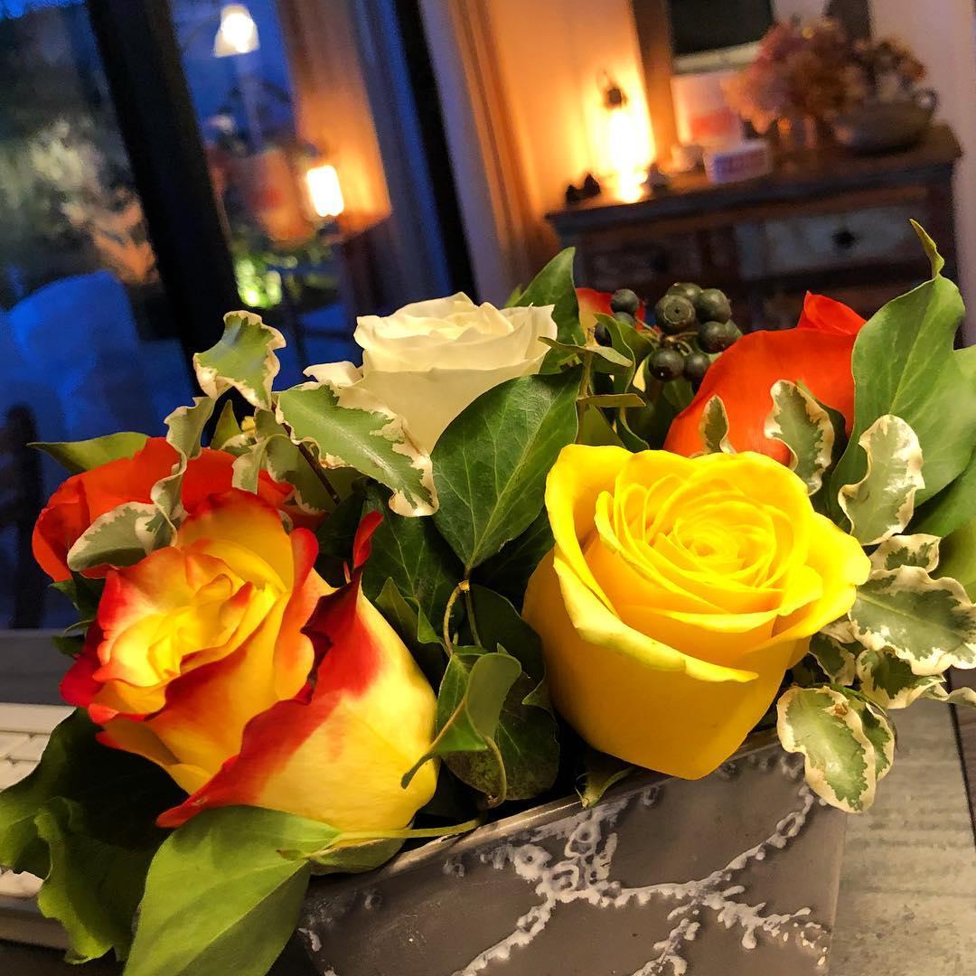 Les roses de la semaine 🌳🌞 ️