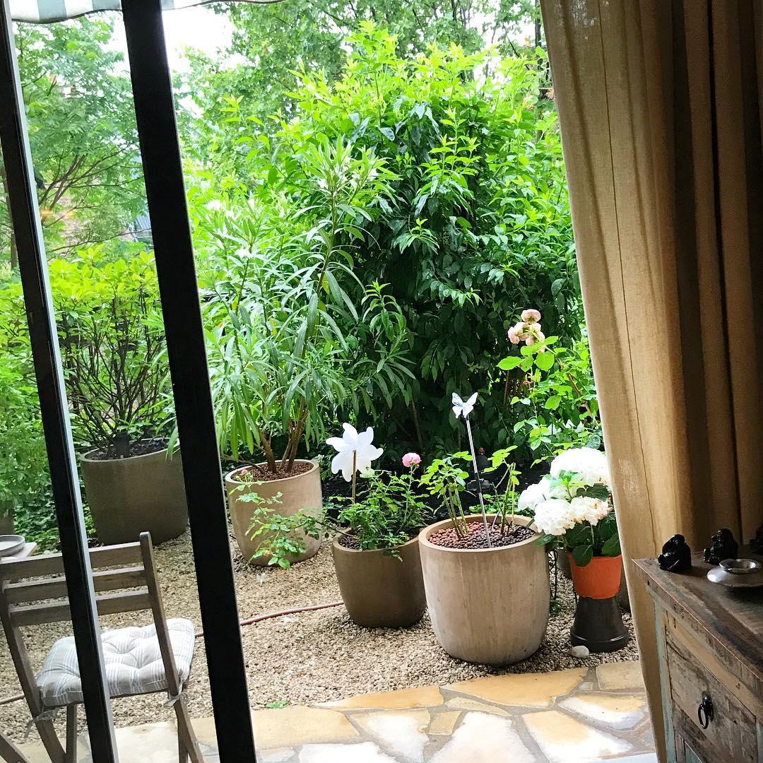 :  sous la pluie ! 🌳🌞 ️