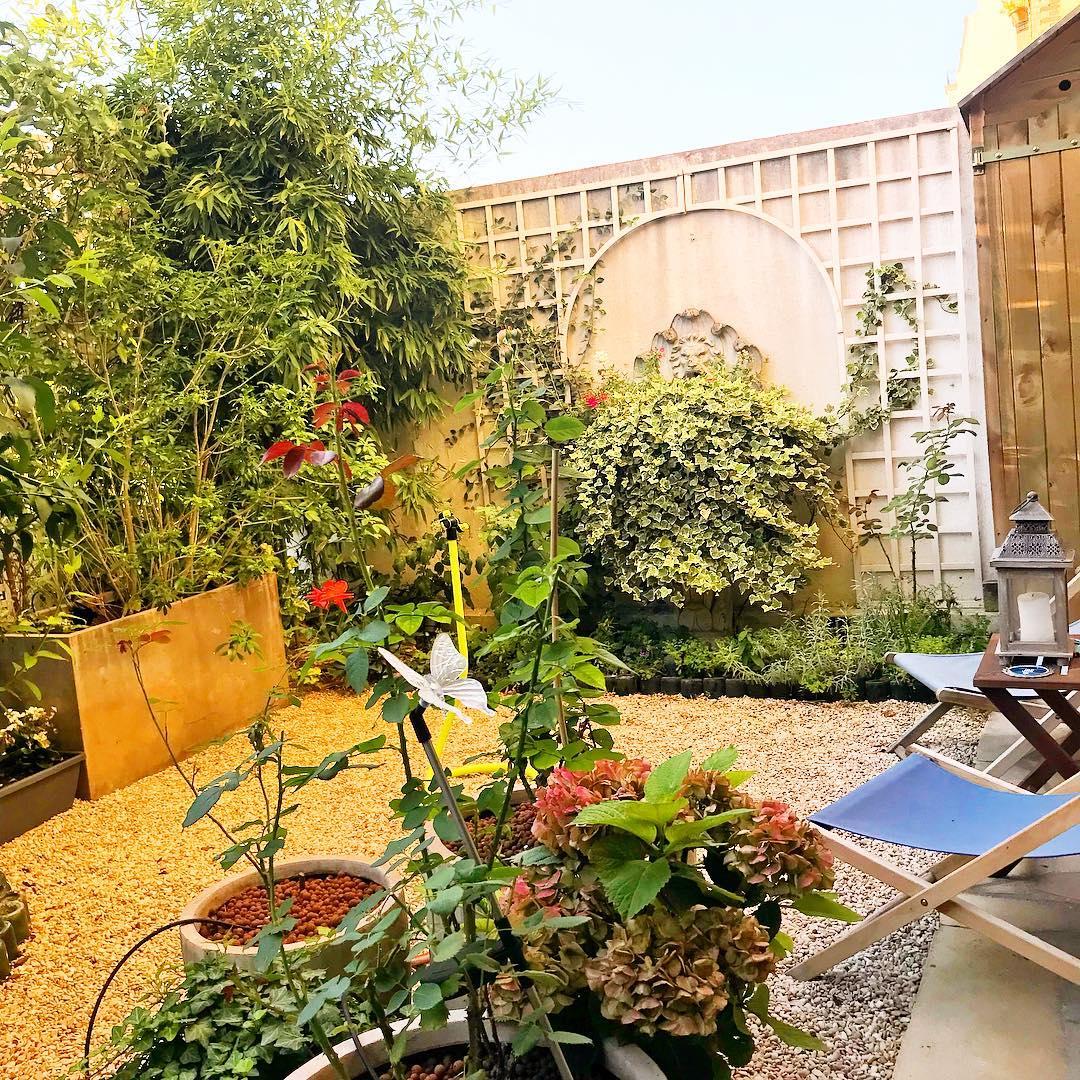 ️ dans le petit jardin  🌳🌞 ️