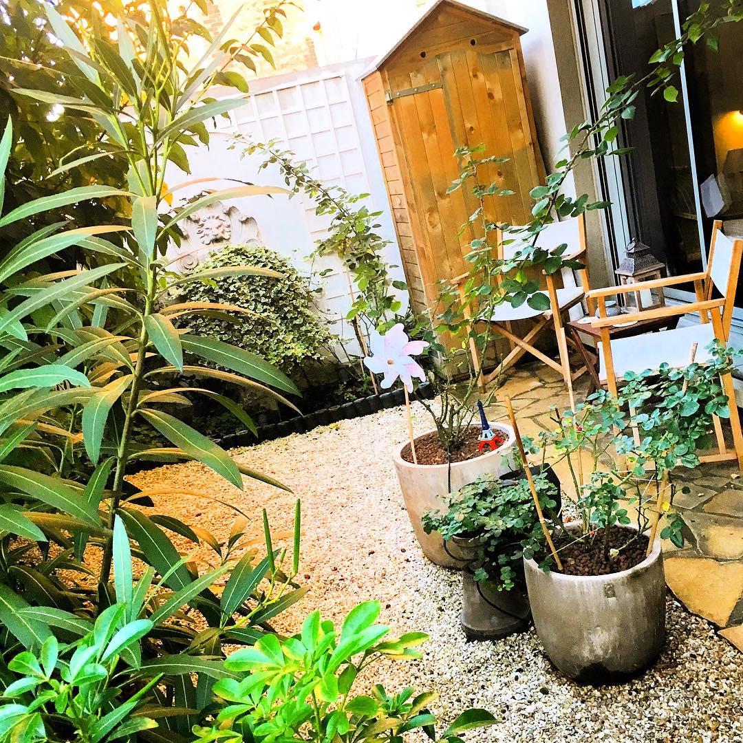 Le petit jardin  🌳🌞 ️ .