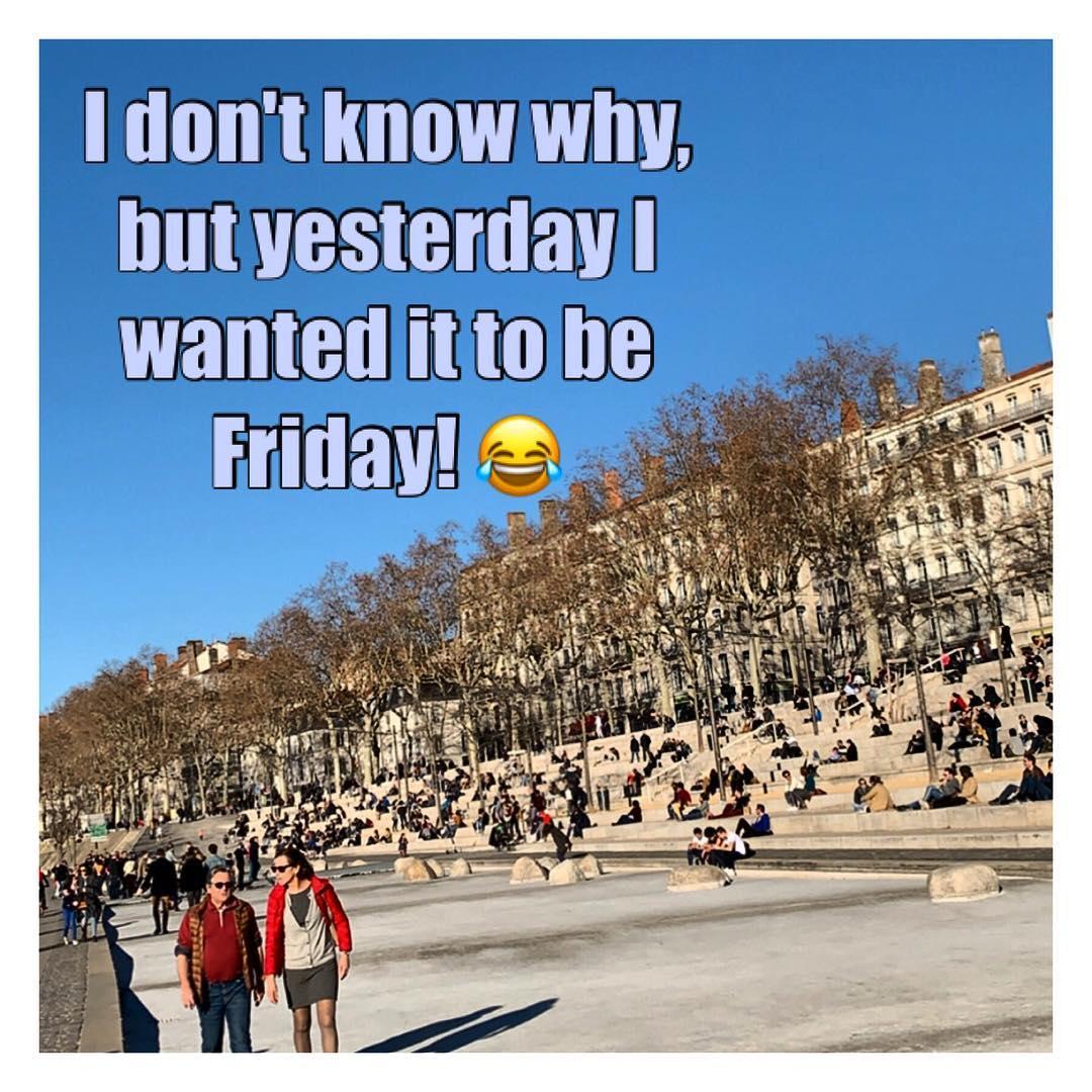 Le vendredi c'est permis ! Photos prises au hasard sur les 1000 dernières ! ️