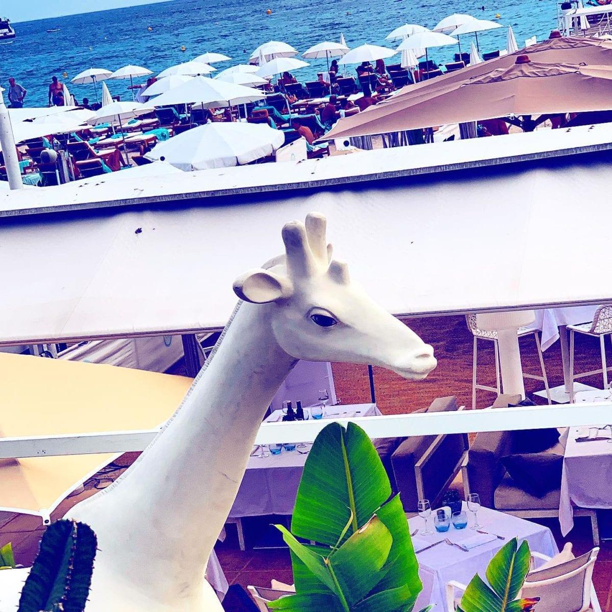 Hommage à @mimi_la_girafe ⛱️ ️